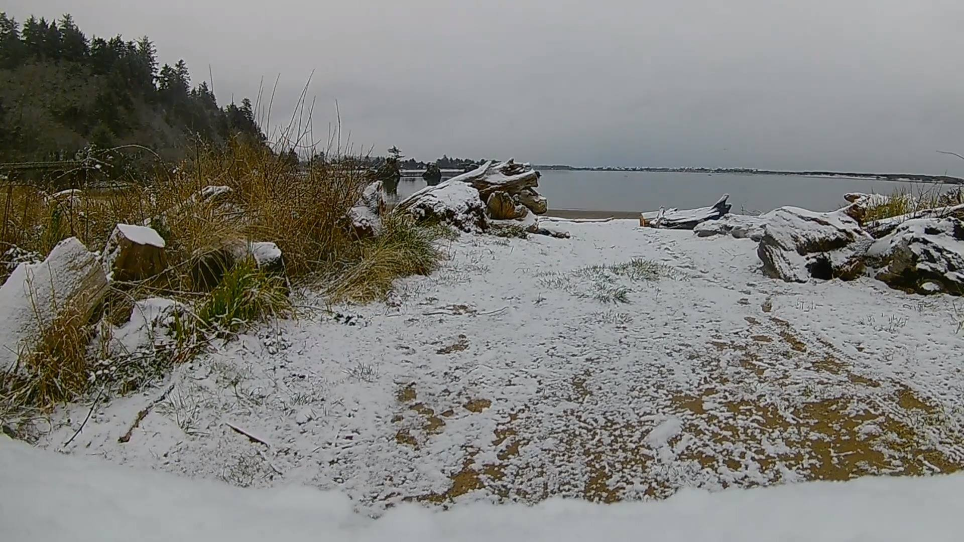 Snow Drive in Lincoln City