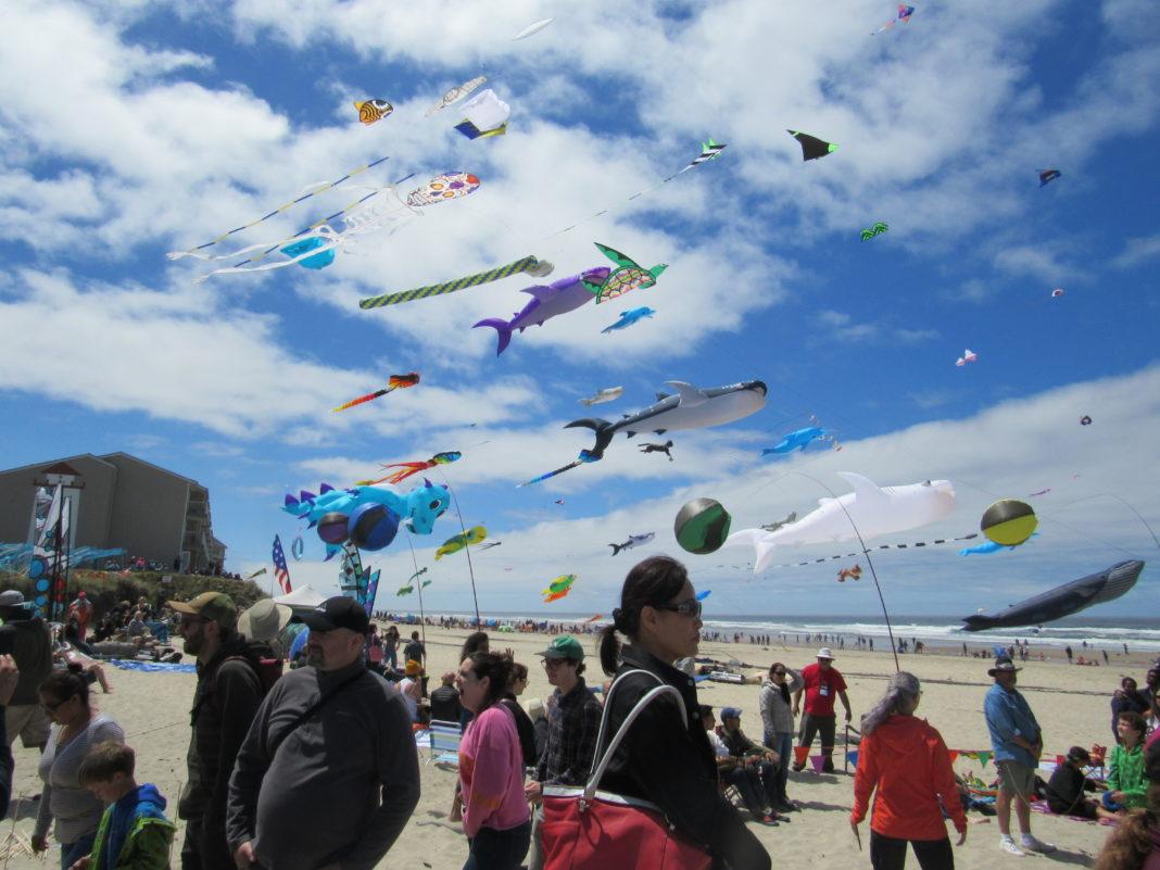 Zoom – Summer Kite Festival