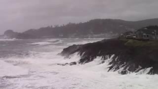 Goodbye Hat – Depoe Bay Wind Storm